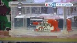 Manchetes mundo 12 Janeiro: Mergulhadores da Indonésia recuperam caixa negra do avião que caiu