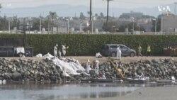 美加州海岸漏油事件可望促进清洁能源转型