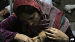 خواتین کا قومی دن،قوانین کے موثر عملدرآمد پر زور