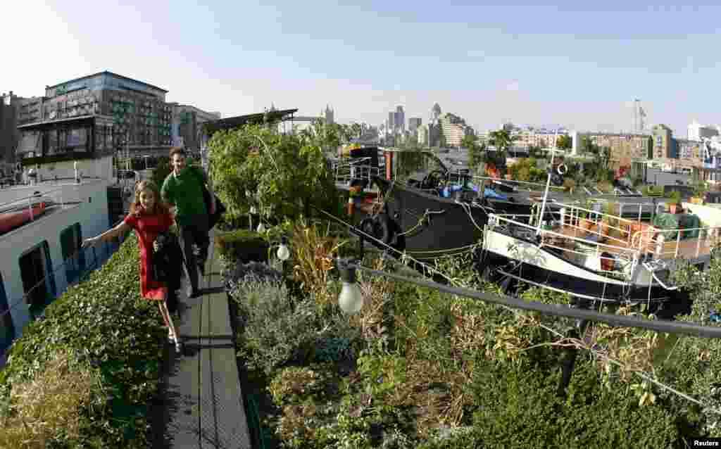 دنیا بھر کے مختلف شہروں میں چھوٹے باغات کے دلفریب مناظر