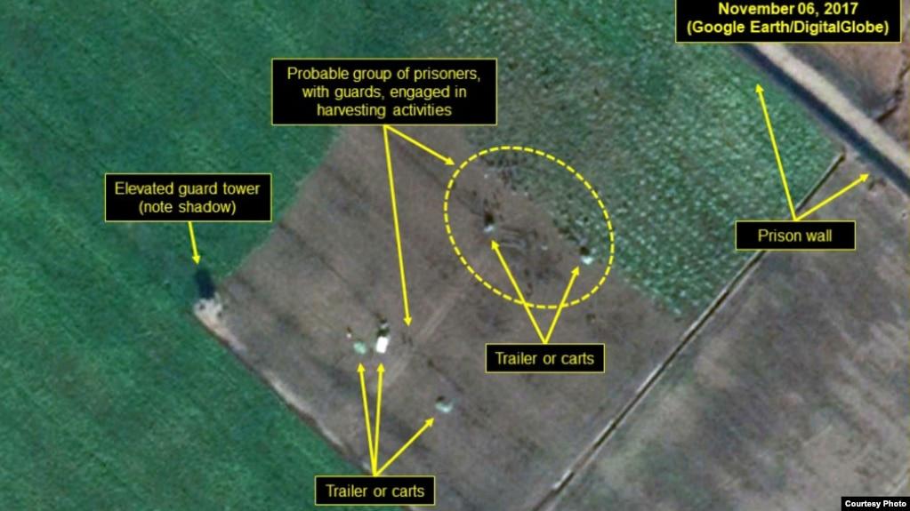 미국 민간단체인 북한인권위원회(HRNK)가 30일 청진의 25호 관리소 위성사진을 공개했다.