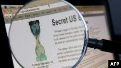 Бумеранг WikiLeaks