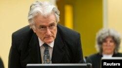"""قضات دادگاه او را برای اقدامات """"وحشتآفرین"""" در سارایوو در طی جنگ بوسنی بین سالهای ۱۹۹۲ تا ۱۹۹۵ مسئول دانستند."""
