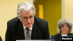 FILE - Bosnian Serb wartime leader Radovan Karadzic appears in the courtroom at the International Criminal Tribunal for Former Yugoslavia in The Hague, July 11, 2013.