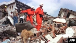 'İstanbul'u Bir Deprem Bekliyor'