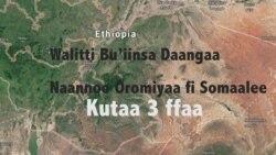Walitti Bu'iinsa Daangaa Bulchiinsa Naannoo Oromiyaa fi Somaalee Gidduu Jiruuf Sababaan Himamuu Wal Hin Simatu: Kutaa 3 ffaa