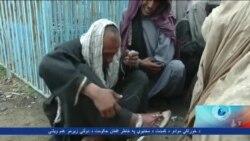 Kandahar Report