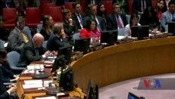 Засідання щодо ситуації на сході України в Раді Безпеки ООН – головні заяви. Відео