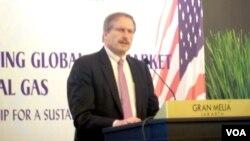 Direktur bidang energi Departemen Luar Negeri AS Robert F. Cekuta di Jakarta. (VOA/Iris Gera)