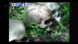 VOA60 AFRICA - MARCH 25, 2014
