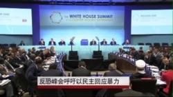 反恐峰会呼吁以民主回应暴力