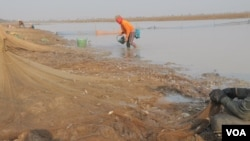Villagers gather to catch fish in Trapaing Thmar reservoir as the drought continues to hit the community, in Banteay Meanchey, Feb. 23, 2019. (Sun Narin/VOA Khmer)