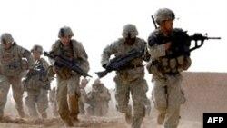 Силы коалиции в Афганистане захватили несколько командиров Талибана