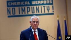 آقای تیلرسون سه شنبه شب در نشستی در پاریس درباره حمله شیمیایی سخنرانی کرد.