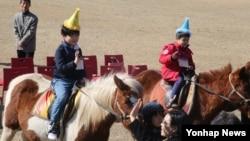 제주 서귀포시 시흥초등학교에서 2일 학부모들이 말을 타고 입학하는 자녀들의 모습을 사진 찍고 있다.
