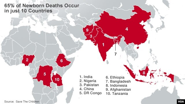 Top 10 countries for newborn deaths in 2013.