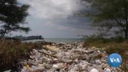 UN Report: Humans Having Alarming Negative Impact on Biodiversity
