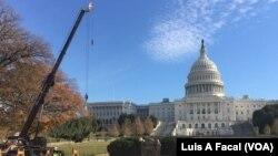 El árbol de Navidad del Capitolio llegó a Washington el lunes, 27 de noviembre de 2017.