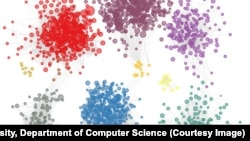Princeton University researchers identified 2,500 genes that may contribute to autism. The genes possibly connected to autism are gathered into colored groups based on how they function and relate to each other in the brain. (Image courtesy of Olga Troyanskaya, Dept. of Computer Science)