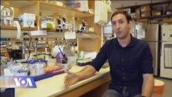 ქართველი მეცნიერი აშშ-ში კიბოს დამარცხების გზებს ეძებს