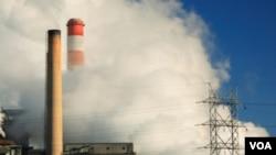 La contaminación y el cambio climático serían la causa del proceso de extinción del planeta.