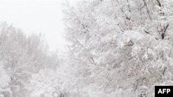 Amerika'nın Doğusunda Kara Kış