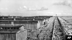 MAJDENAK toplama kampı