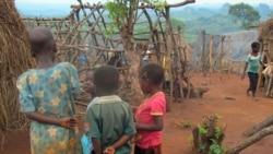 """Trabalho infantil afirma-se como """"problema grave"""" em Nampula"""