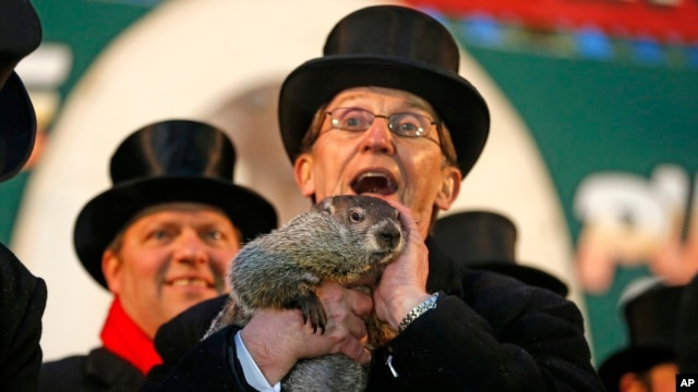 Punxsutawney Phil is held by Ron Ploucha after emerging from his burrow Sunday, Feb. 2, 2014.