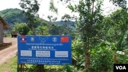 """云南省在老挝北部丰沙里省推广的""""罂粟替代种植项目""""乏人问津。(美国之音朱诺拍摄)"""