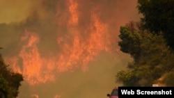 美国加州圣塔芭芭拉县山林大火 (网络截图)