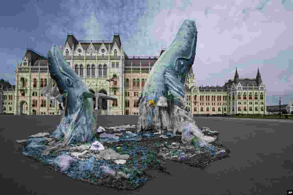 Whale sculptures made from plastic waste recovered from the ocean are seen at the parliament building in Budapest, Hungary.