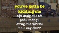 Học tiếng Anh qua phim ảnh: You've gotta be kidding me - Bedtime Stories (VOA)