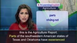 Anh ngữ đặc biệt: Oklahoma Drought (VOA)
