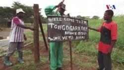 Zimbabve iqtisadiyyatının dirçələlişi yolları
