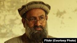 عطاالله لودین، معاون شورای عالی صلح افغانستان