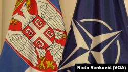 Zastave Republike Srbije i NATO, Foto: VOA