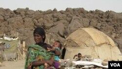 Afar Drought 03