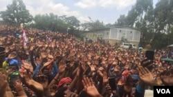 에티오피아 암보 지역에서 지난 19일 열린 야당인 MEDREK 유세 현장에 많은 지지자들이 몰려 있다.