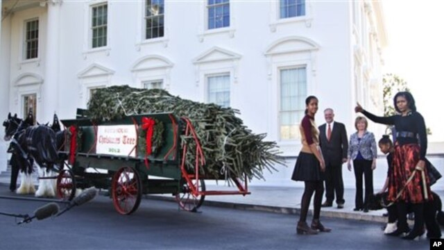 Michelle Obama dan kedua putrinya menyambut kedatangan pohon Natal di depan Gedung Putih, Jumat (23/11).