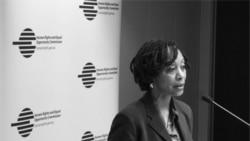 گی مک دوگال، نماینده ویژه امور اقلیت ها در سازمان ملل