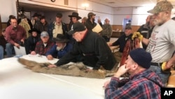 In this Feb. 2, 2019 photo, potential buyers examine a coyote pelt on a table at a trappers' auction in Herkimer, N.Y. (AP Photo/Michael Hill)