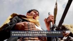 反映美国政府政策立场的视频社论:拜登总统计划终止也门战争