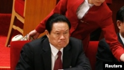 时任中央政法委书记的周永康在2007年10月召开的中共十七大开幕式上