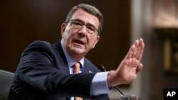 Eshton Karter Senat huzurida, Vashington, 4-fevral, 2015