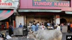 ایک گائے لکھنئو میں بیف کے کبابوں کی ایک صدی سے زیادہ پرانی دکان 'ٹنڈے کبابی' کے سامنے سے گذر رہی ہے۔ فائل