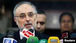 Iranian Foreign Minister Ali Akbar Salehi speaks during a news conference following his meeting with Sheikh Ahmed Mohamed el-Tayeb, Egyptian Imam of al-Azhar Mosque, in Cairo, January 10, 2013.
