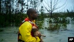 Seorang relawan mencari pemilik seekor anjing yang diselamatkannya dari banjir akibat hantaman badai Dorian di Freeport, Grand Bahama, 3 September 2019.