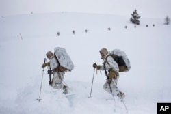 A group of U.S. Marines walk along a snow-covered trail during advanced cold-weather training at the Marine Corps Mountain Warfare Training Center Sunday, Feb. 10, 2019, in Bridgeport, Calif. (AP Photo/Jae C. Hong)