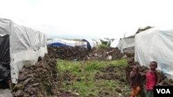Kemah penampungan pengungsi dekat Goma, Kongo. (Nicolas Pinault/VOA). PBB membutuhkan hampir $900 juta bantuan kemanusiaan bagi negara ini, Kamis (7/2).